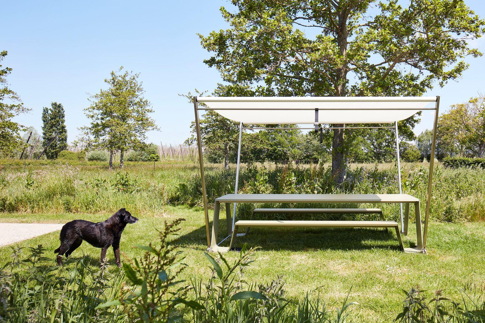 Ein Picknick in der Natur